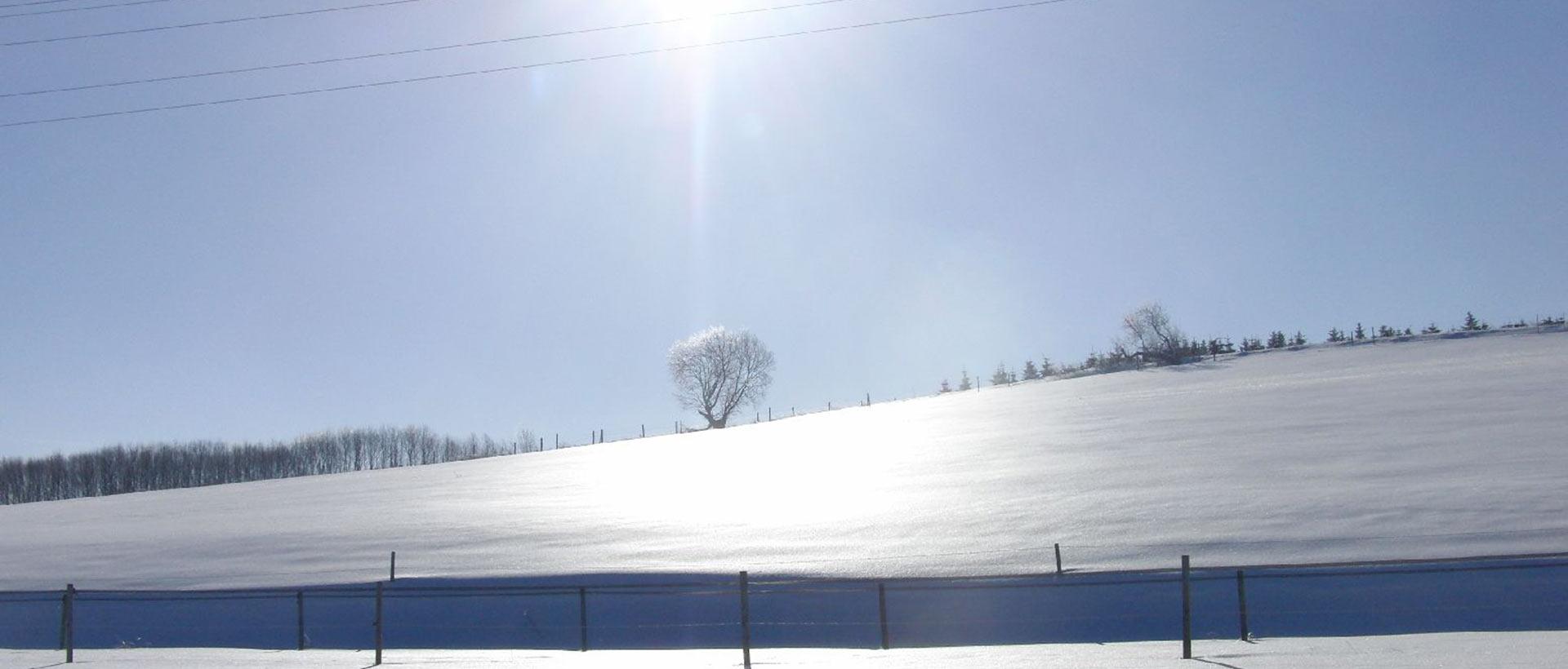 reitschule_berger_winterlandschaft_001