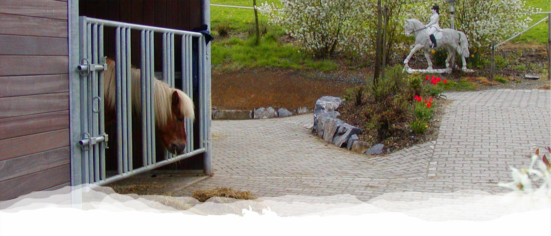 reitschule_berger_pferdeunterbringung_001